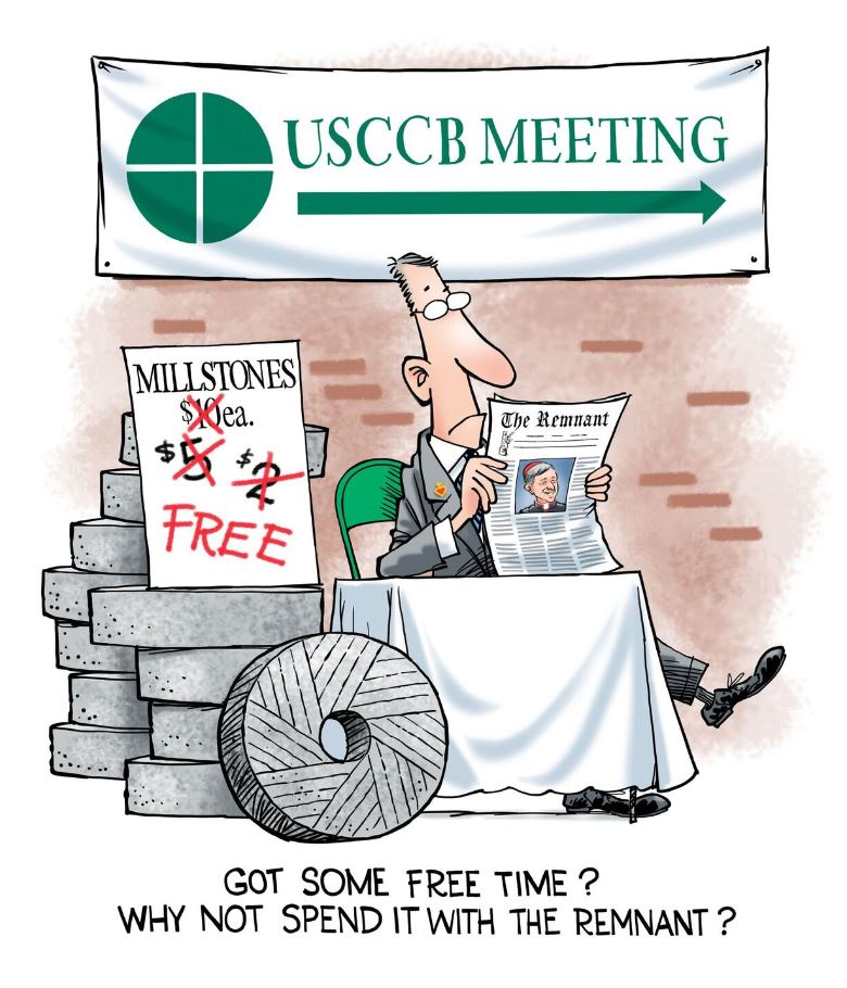 Cartoon USCCB screenshot