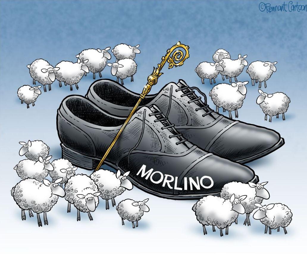 tom morlino cartoon GOOD