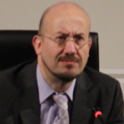 Ruiz Miguel Carlos