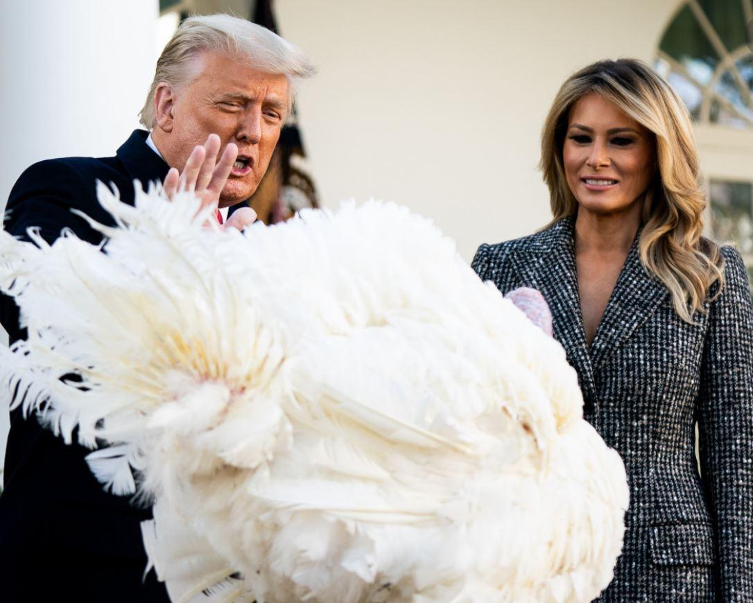 thanksgiving Trump Melania turkey pardon