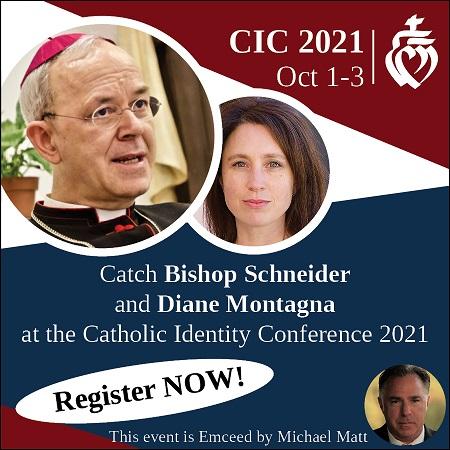 CIC ad Diane and Schneider