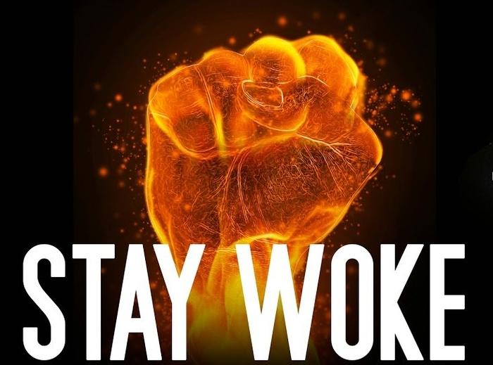 stay woke meme4