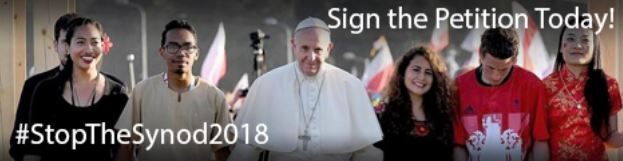 Stop synod banner 2
