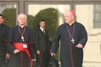 "The Synod on the Family: Can the ""Good Bishops"" Save Us? (Don't Hold Your Breath)"