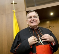 Cardinal Burke: New Position, Part-time, Will Not Delay Formal Correction