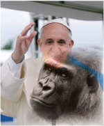 HOMOSEXUAL PRIESTS: Francis Acknowledges 800-Pound Gorilla