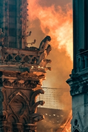 Purification of Notre Dame by Fire